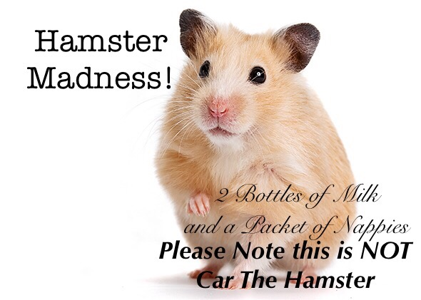 Hamster Madness!