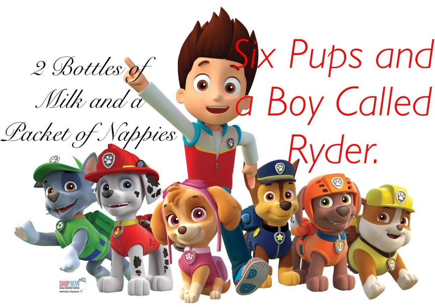 Six Pups and a Boy Called Ryder